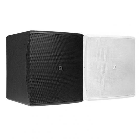 "BASO10 Compact 10"" bass reflex cabinet"